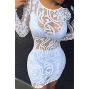Sexy Round Neck Long Sleeves Clairvoyant White Lace Sheath Dress (Only The Dresses)